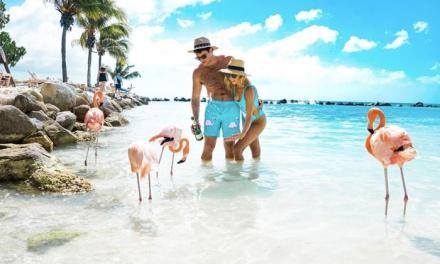 Aruba, el destino ideal para los veranistas