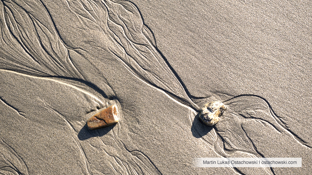 7 Abstract Patterns in the Intertidal Zone