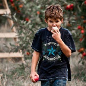 Percorso di supporto dei disturbi alimentari dell'infanzia e dell'adolescenza