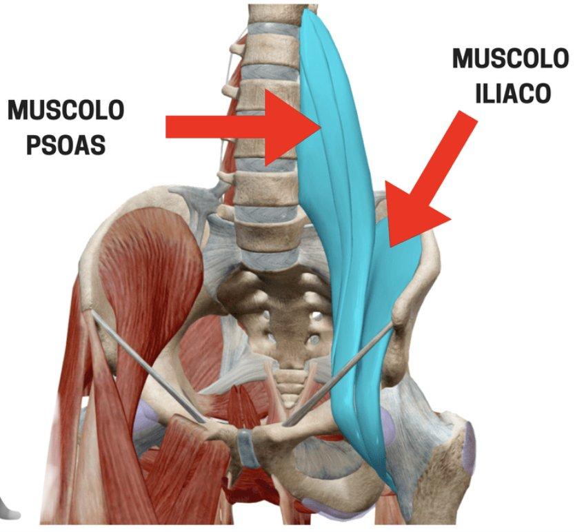 dolore pelvico colon irritabile