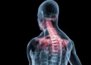 Il dolore al collo e alla cervicale