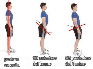 simonetta alibrandi osteopata posturologo la postura