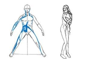 simonetta-alibrandi-osteopata-roma-posturologo-spalla-congelata-periartrite-scapolo-omerale-anatomia-spalla-catena-muscolare-antero-laterale