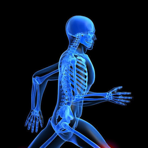 Ostéopathie et mobilité articulaire