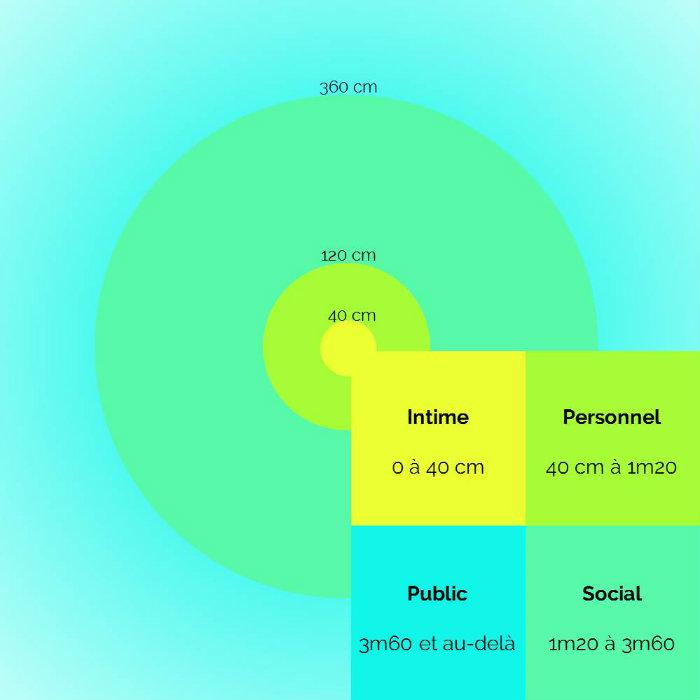 Schéma illustrant le concept de proxémie avec les distances intime, personnelle, sociale et publique.