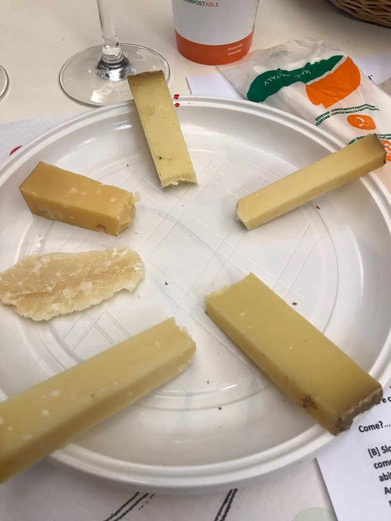 Six firm cheeses at the tasting during Cheese 2017 in Bra
