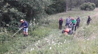 Einweisung für künftige Landschaftspfleger