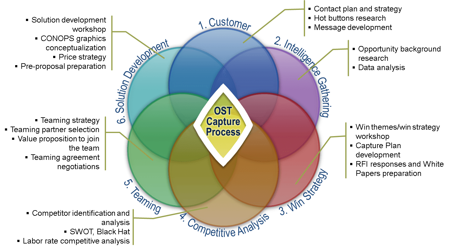 Capture Management Consulting for Government Contractors