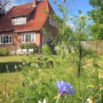 Ferienhaus kiek-ut 1