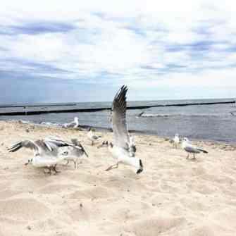 ostsee-koelpinsee Erholung an der Ostsee