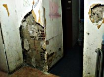 ѕид #1