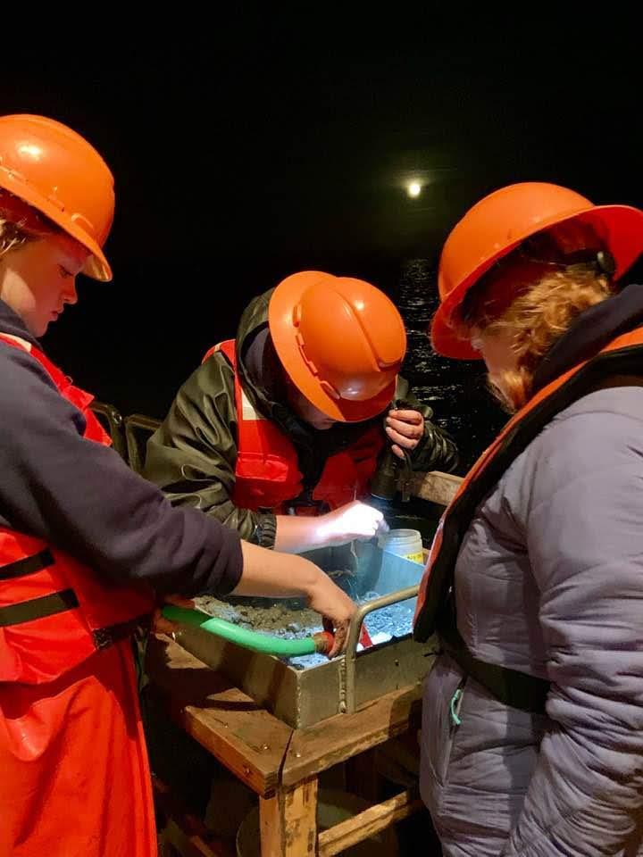 Three people looking through sediment sample