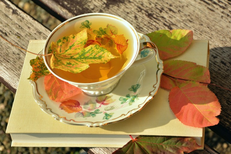 Saucer and cup of tea, sitting on a book, with fall leaves floating in the cup and on the book.