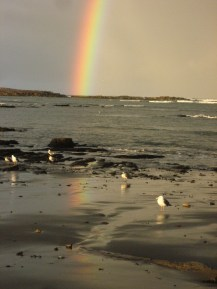 A rainbow over a third field site on Ano Nuevo Island, California