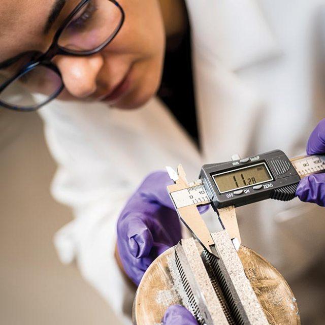 Oregon State Researcher in Lab