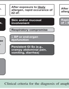 Anaphylaxis dx also steroids for medical myth amp em rh osuemed wordpress