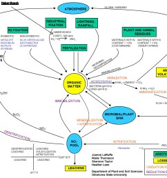 complete nitrogen cycle http psssoil4234 okstate edu lecture [ 1394 x 1072 Pixel ]