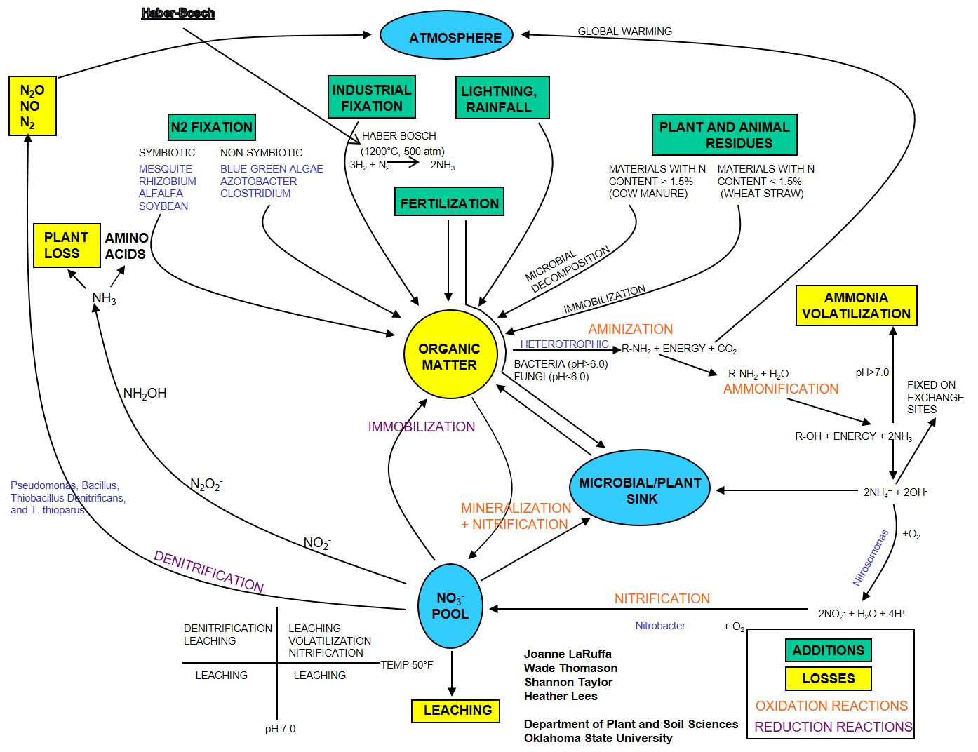 hight resolution of complete nitrogen cycle http psssoil4234 okstate edu lecture