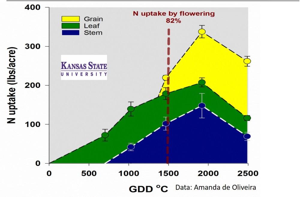 medium resolution of wheat n uptake figure adapted from lollato et al