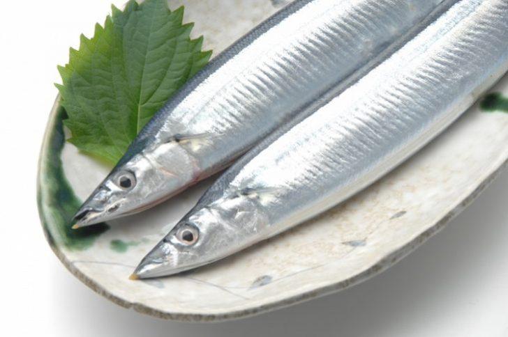 さんま(秋刀魚)の保存方法?新鮮なさんまを選ぶポイントは?