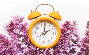 Yellow alarm clock and bouquet of pink lilacs on a white surface