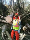 Kris Bateman, posing near one of the many large trees the 3rd Engineering Battalion has had to cut and remove from Armonk streets. All photos by Kris Bateman and Charles Marks.
