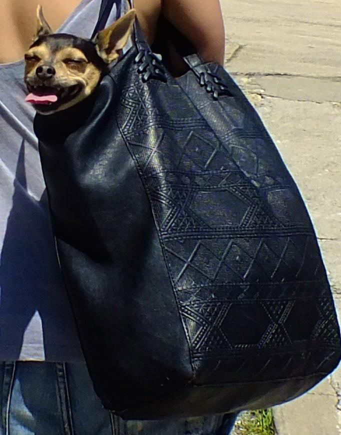 Bean Bag!