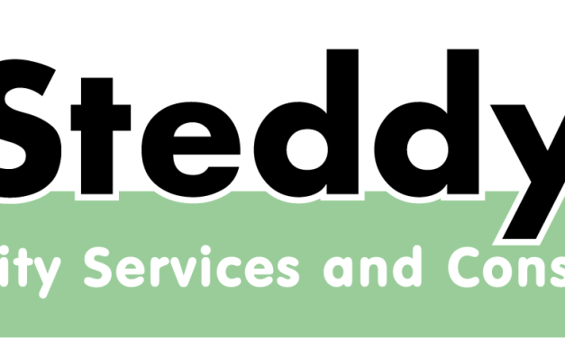 Steddy – Disability Services and Consultants