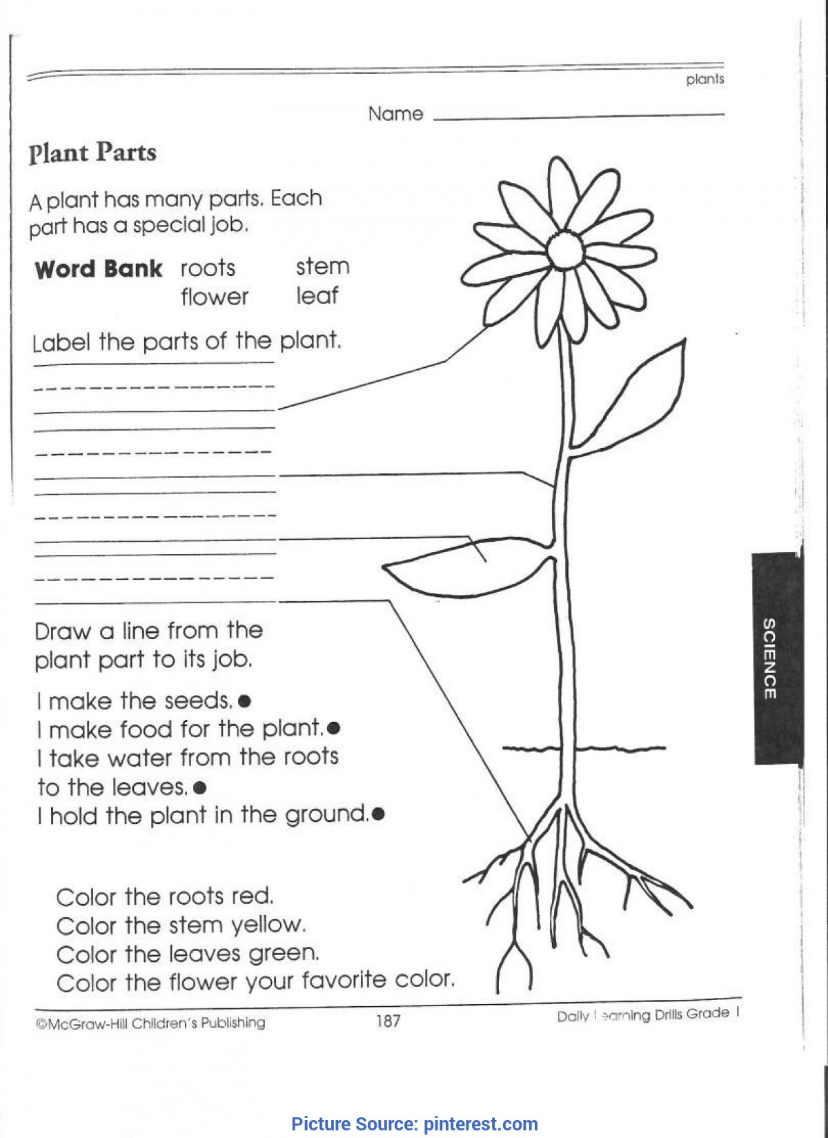 Best Third Grade Science Activities 1st Grade Science