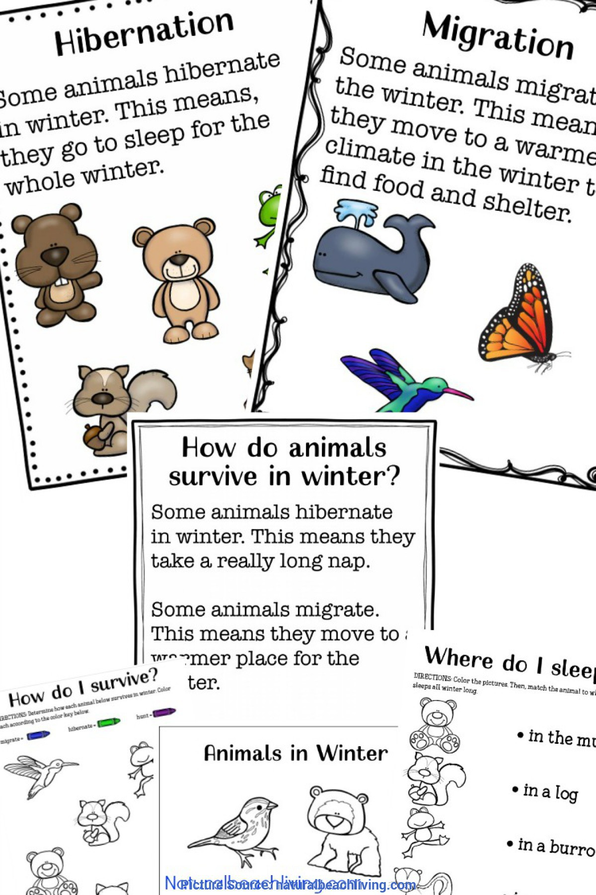 Top First Grade Lesson Plans Journeys Commas In A Series