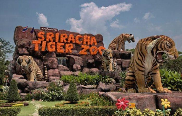 зоопарк Sriracha Tiger Zoo