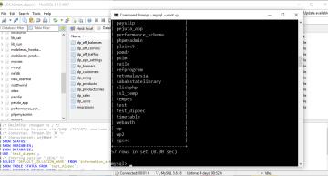 Bila Mana Backup MySQL Adalah Kerja Sia-Sia Dan Cara Mengatasinya