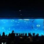 【沖縄・那覇】めんそーれ!南国気分でアニソンバー・オタクバーをはしご旅