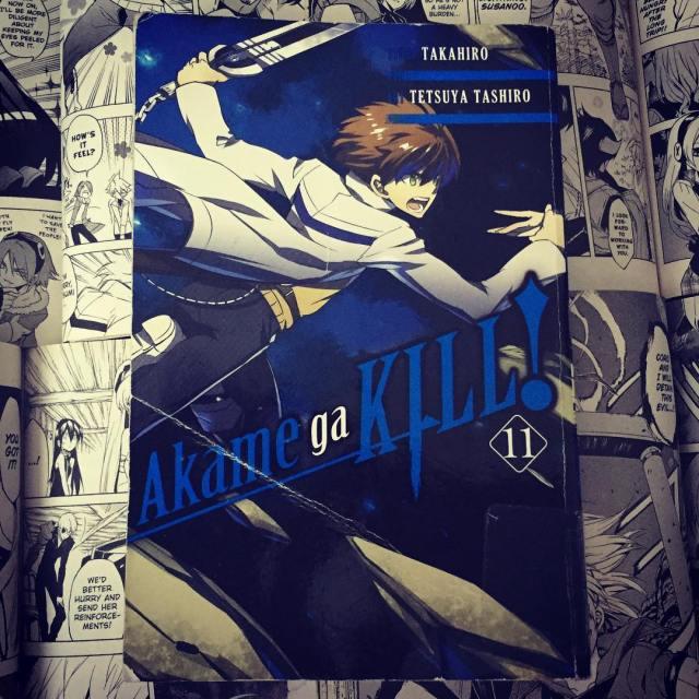 Akame ga Kill Volume 11 Cover