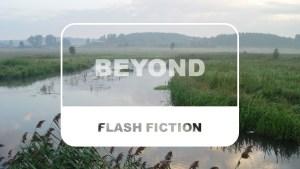 Lynn Sheridan Beyond Flash Fiction