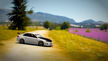 Forza Horizon 2 screenshot (19)