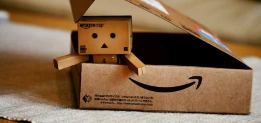 Connaissez-vous Danbo, la mascotte d'Amazon Japan ?