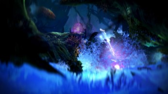 Ori and the Blind Forest (10)