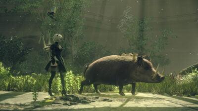 Le saviez-vous : SuzuKube adore les cochons !