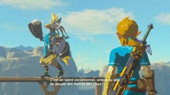 Zelda Breath of The Wild (13)