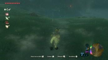 Zelda Breath of The Wild (18)