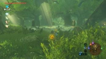 Zelda Breath of The Wild (20)