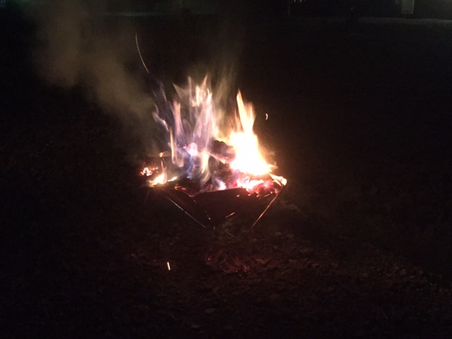 針葉樹の玉の皮を焚く