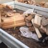 【家の暖房用の薪】山から自家用薪を持ってきた