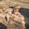 購入したナラを全部回収して、さらに針葉樹をちょびっとだけ追加購入
