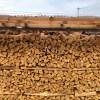 今シーズンの最後に作った針葉樹の棚の薪が、微妙に収縮してきて隙間が空いてきた。  だいたい上の方がスカスカになるんですよね。