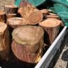 ストーブシティ岐阜の現場 針葉樹回収 その1