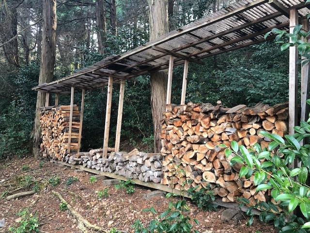 【自宅用薪】自宅用の薪を山から持ってくる