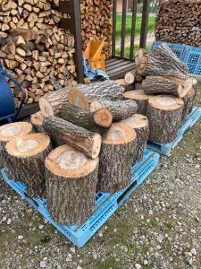 【原木切り】40cm級の玉切り&運びでヘトヘトになった。