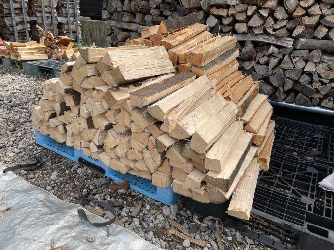 【薪割り】先日回収したカシとケヤキを焚き火用の薪サイズで割る